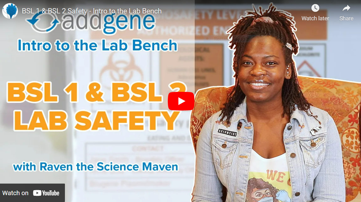 """Featured image for """"Intro to the Lab Bench: BSL 1 & BSL 2 Safety"""""""